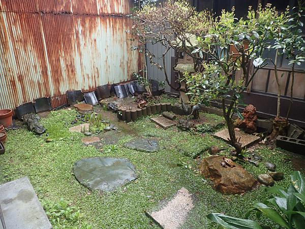 f:id:tamaokiyutaka:20180612143340j:plain