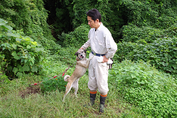 f:id:tamaokiyutaka:20180925141455j:plain
