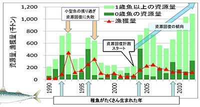 f:id:tamaokiyutaka:20190311001016j:plain