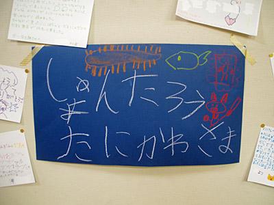f:id:tamaokiyutaka:20190311014905j:plain