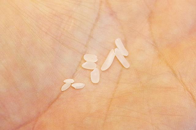 f:id:tamaokiyutaka:20190503002428j:plain