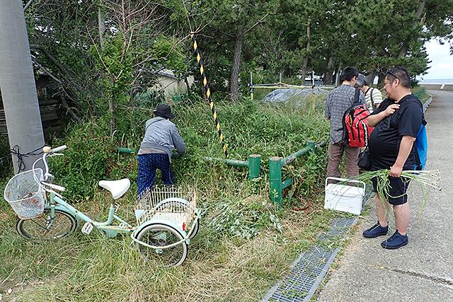 f:id:tamaokiyutaka:20190710103236j:plain
