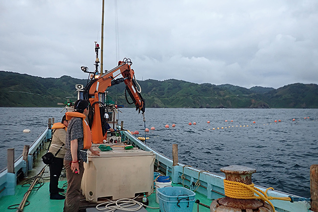 f:id:tamaokiyutaka:20190710103444j:plain