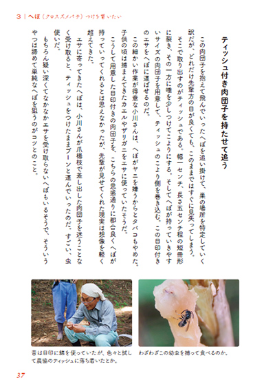 f:id:tamaokiyutaka:20191218114632j:plain