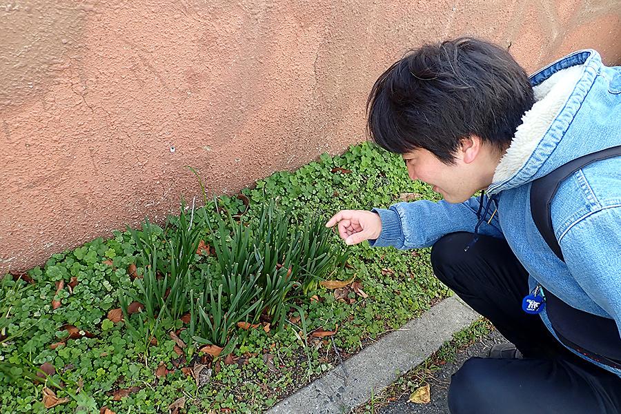f:id:tamaokiyutaka:20200122003904j:plain