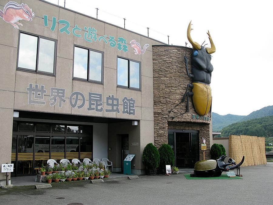 f:id:tamaokiyutaka:20200526181458j:plain