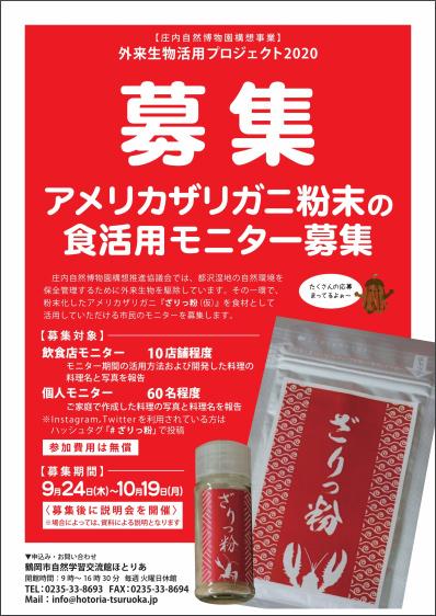 f:id:tamaokiyutaka:20201115140124j:plain