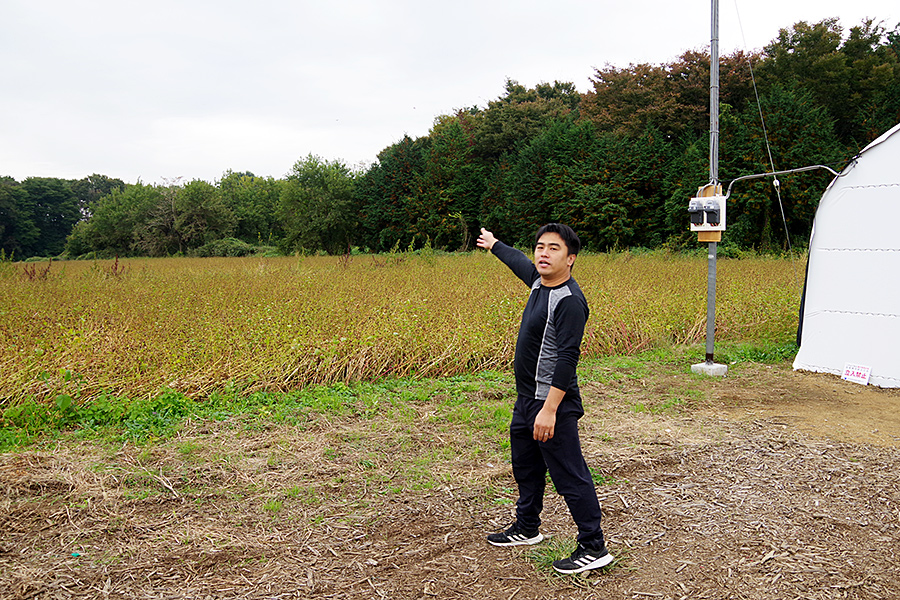 f:id:tamaokiyutaka:20201119235205j:plain