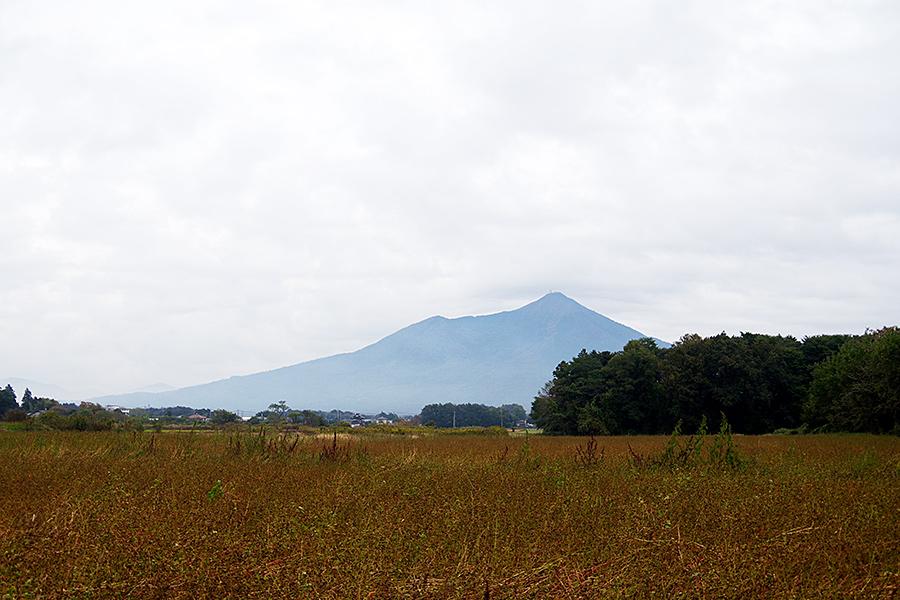 f:id:tamaokiyutaka:20201119235246j:plain