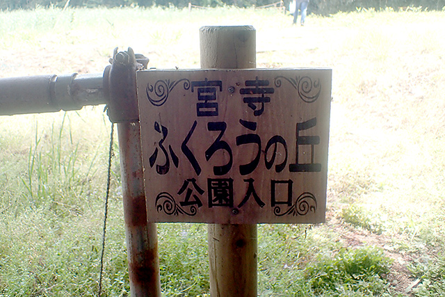 f:id:tamaokiyutaka:20210517142455j:plain