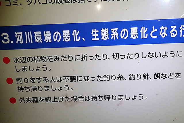 f:id:tamaokiyutaka:20210728120745j:plain
