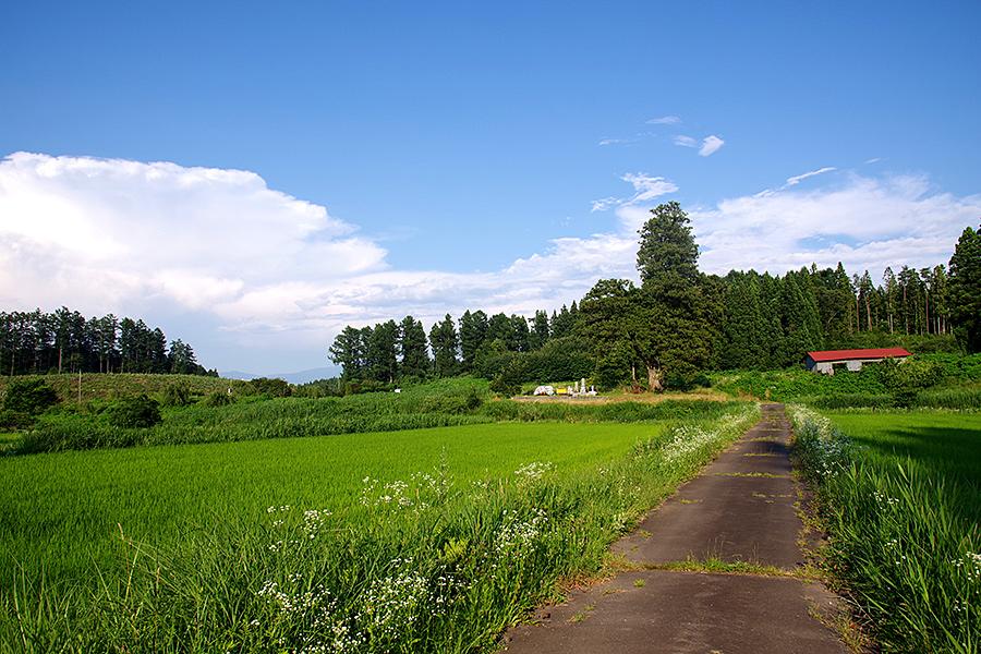 f:id:tamaokiyutaka:20210827163141j:plain