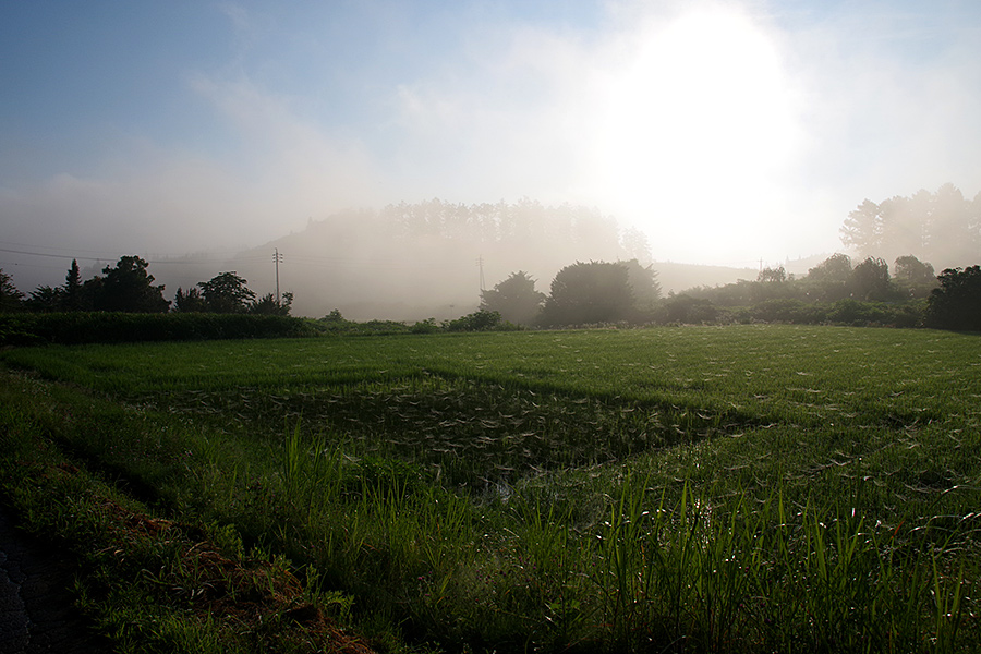 f:id:tamaokiyutaka:20210827163312j:plain