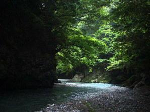 日原川下流