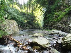 大丹波川下流の様子