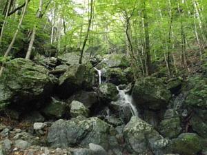倉沢谷の上流、長尾谷