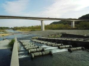 渓流釣り・羽村の堰
