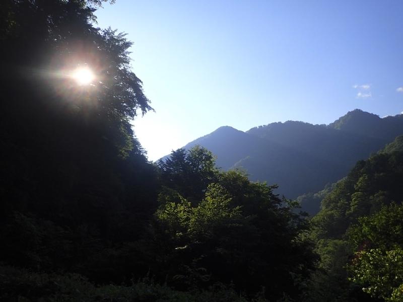 奥多摩渓流の朝