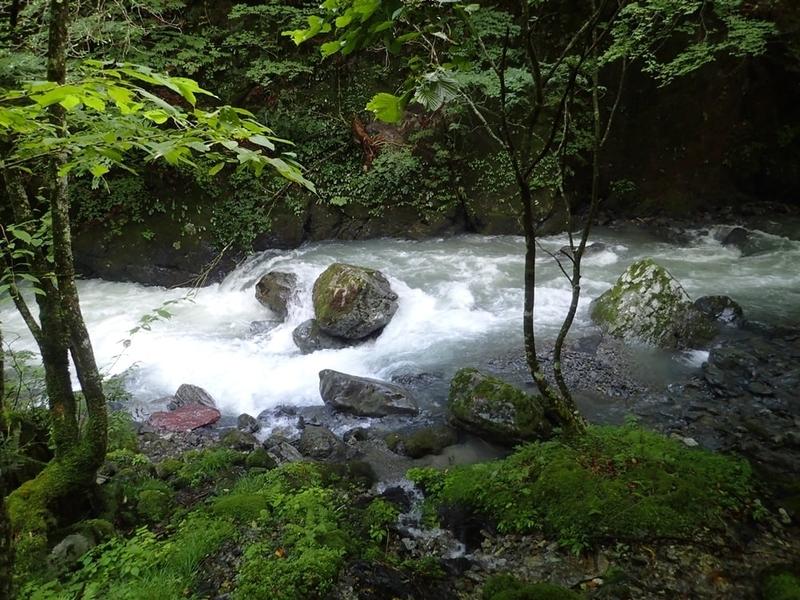 渓流の増水