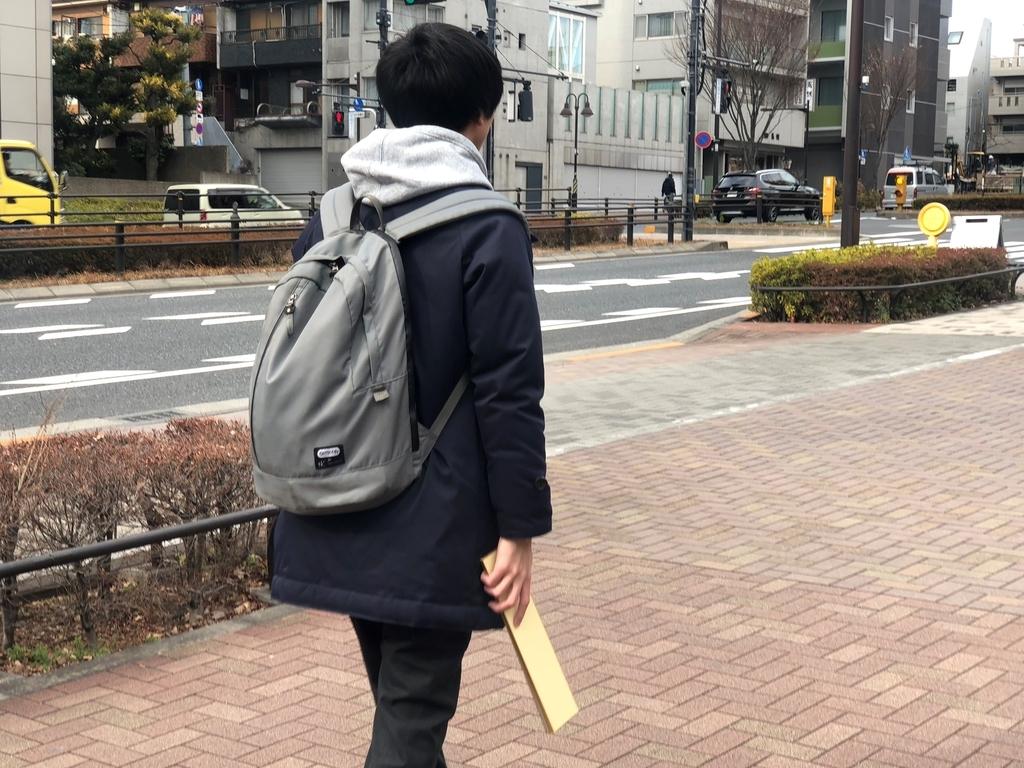 f:id:tamarutamaru:20190201010832j:plain