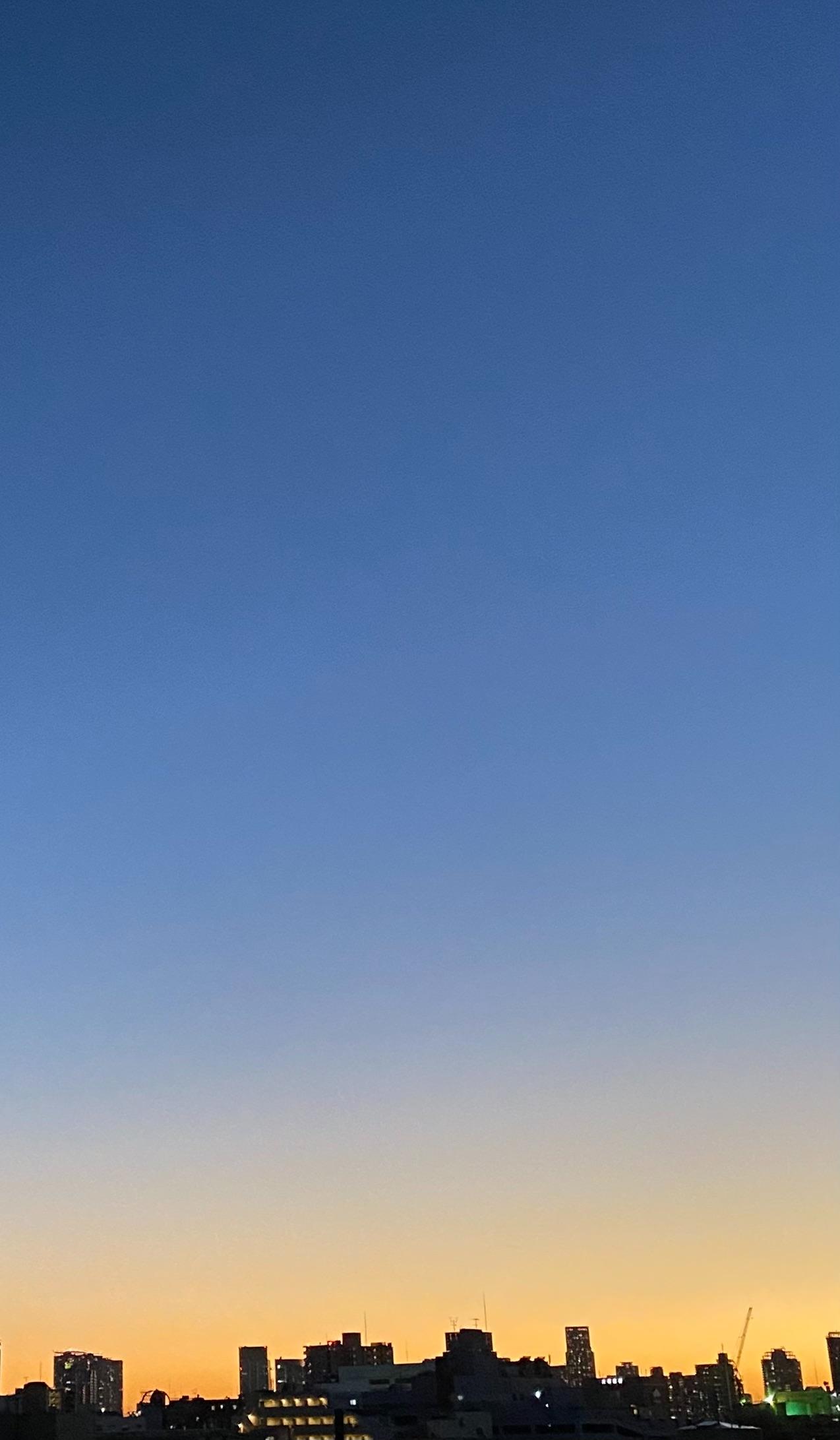 f:id:tamasapuri:20201121215202j:image