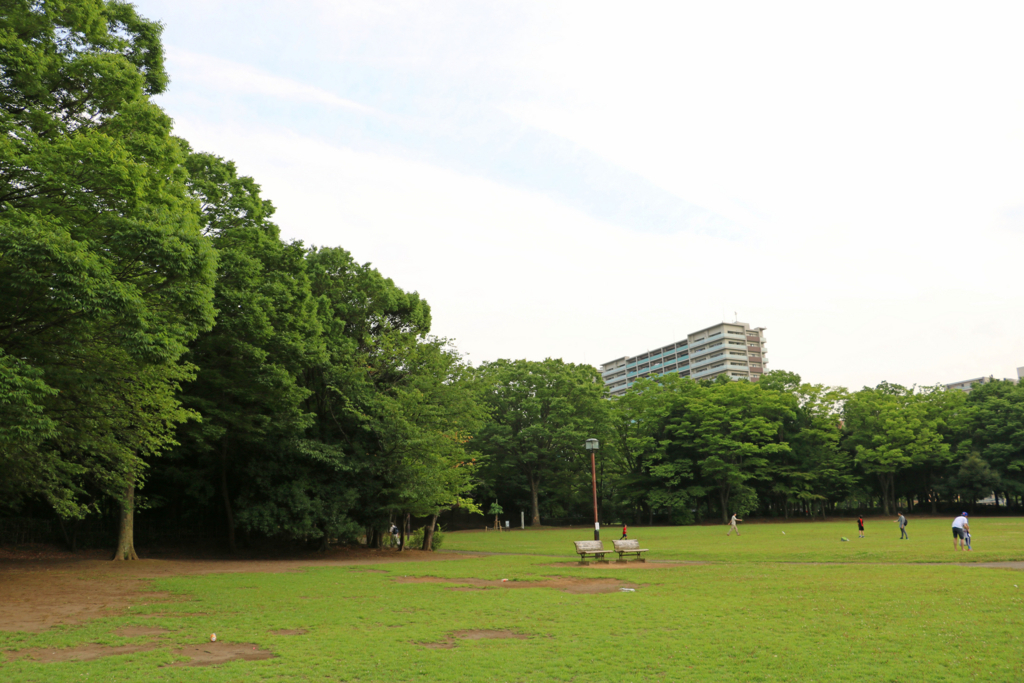 f:id:tamatamatama2017:20170720194213j:plain