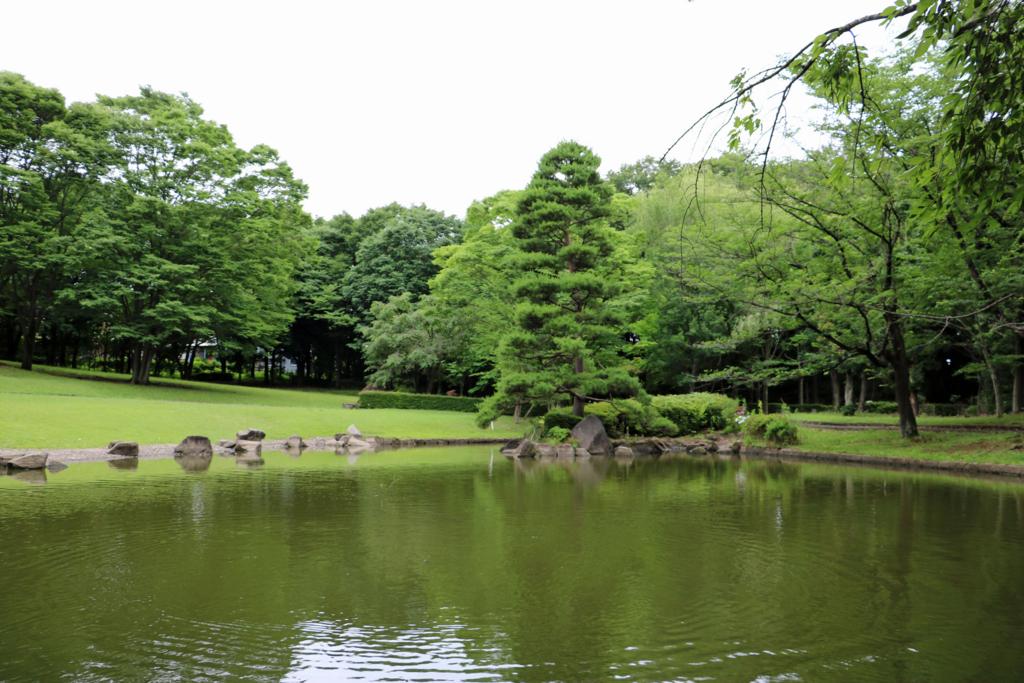 f:id:tamatamatama2017:20170720195214j:plain