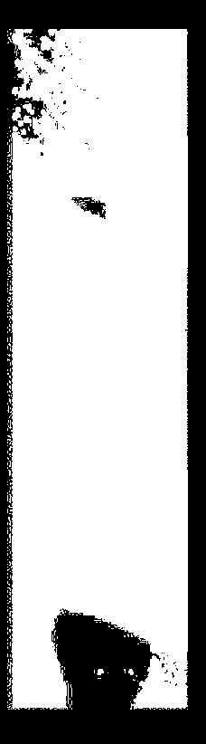 f:id:tamatamatan:20170221190018p:plain