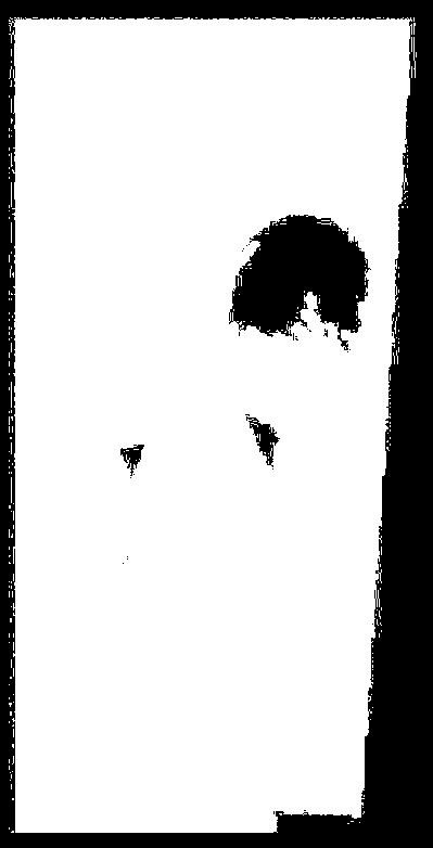 f:id:tamatamatan:20170221190029p:plain