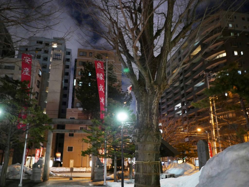 f:id:tamayoshi:20170319143856j:plain
