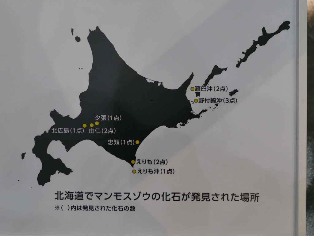 f:id:tamayoshi:20170725212156j:plain