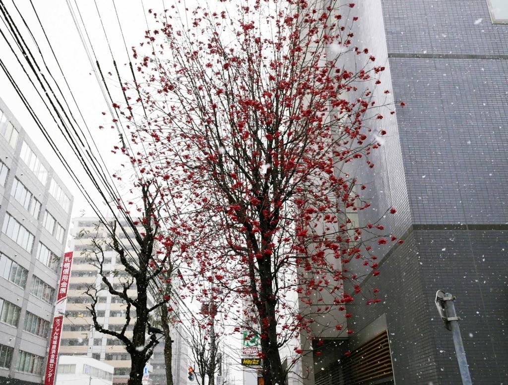 f:id:tamayoshi:20171203110608j:plain
