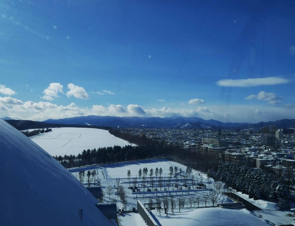 f:id:tamayoshi:20171217144645j:plain