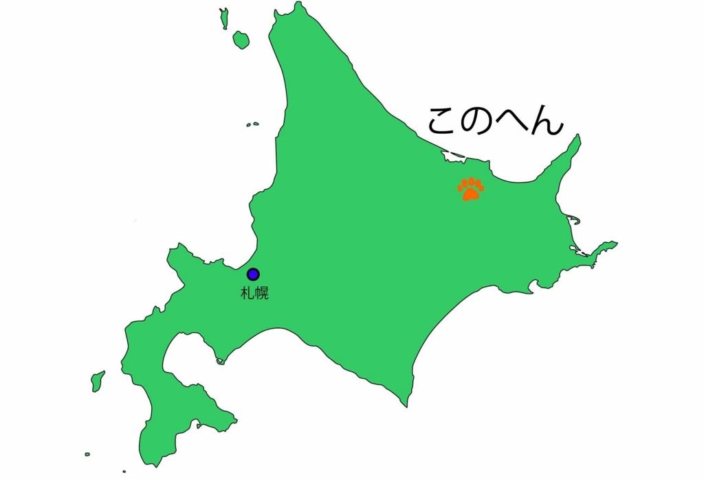 f:id:tamayoshi:20180603112244j:plain