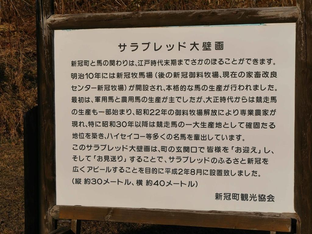 f:id:tamayoshi:20190122205127j:plain