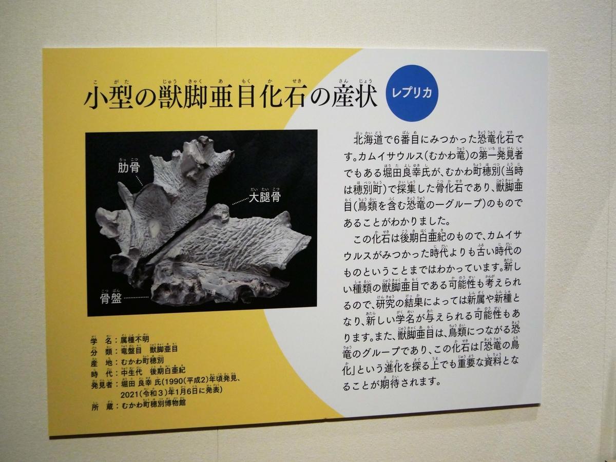 f:id:tamayoshi:20210314174659j:plain