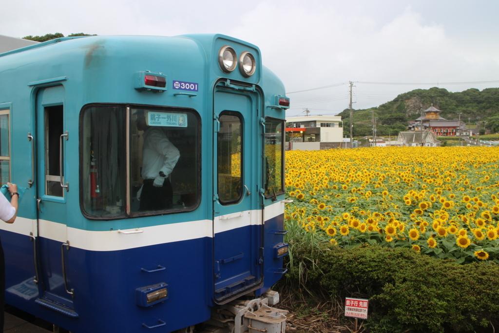 f:id:tamayuki1007:20170902232454j:plain