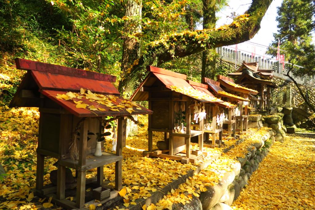 犬山針綱神社のいちょう