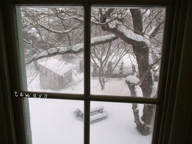 窓・寒空・雪