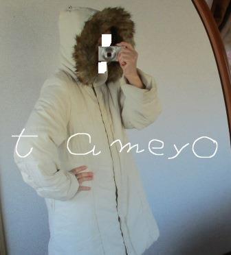 f:id:tameyo:20181203192606j:plain