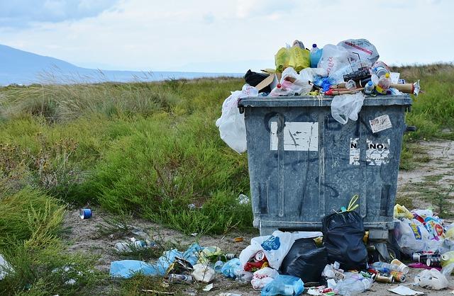片づけで不要品を家から出しても地球の環境は危機的