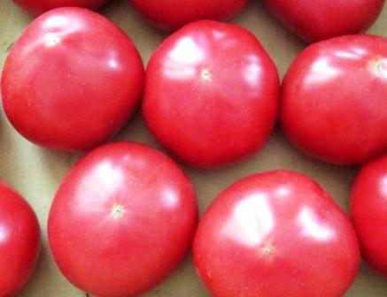 トマトとサバ缶炊き込みご飯