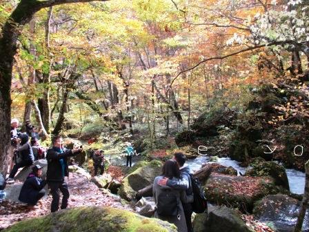 十和田八幡国立公園