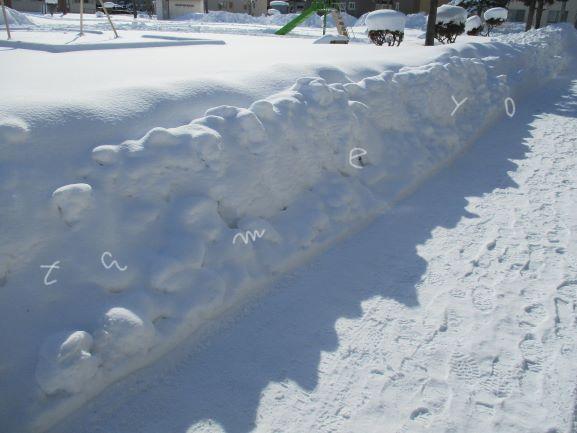 大寒波・大雪