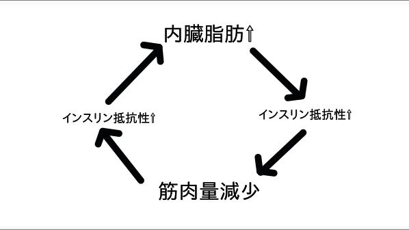 インスリン抵抗性の負の連鎖