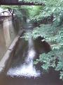 日の出橋/目黒川
