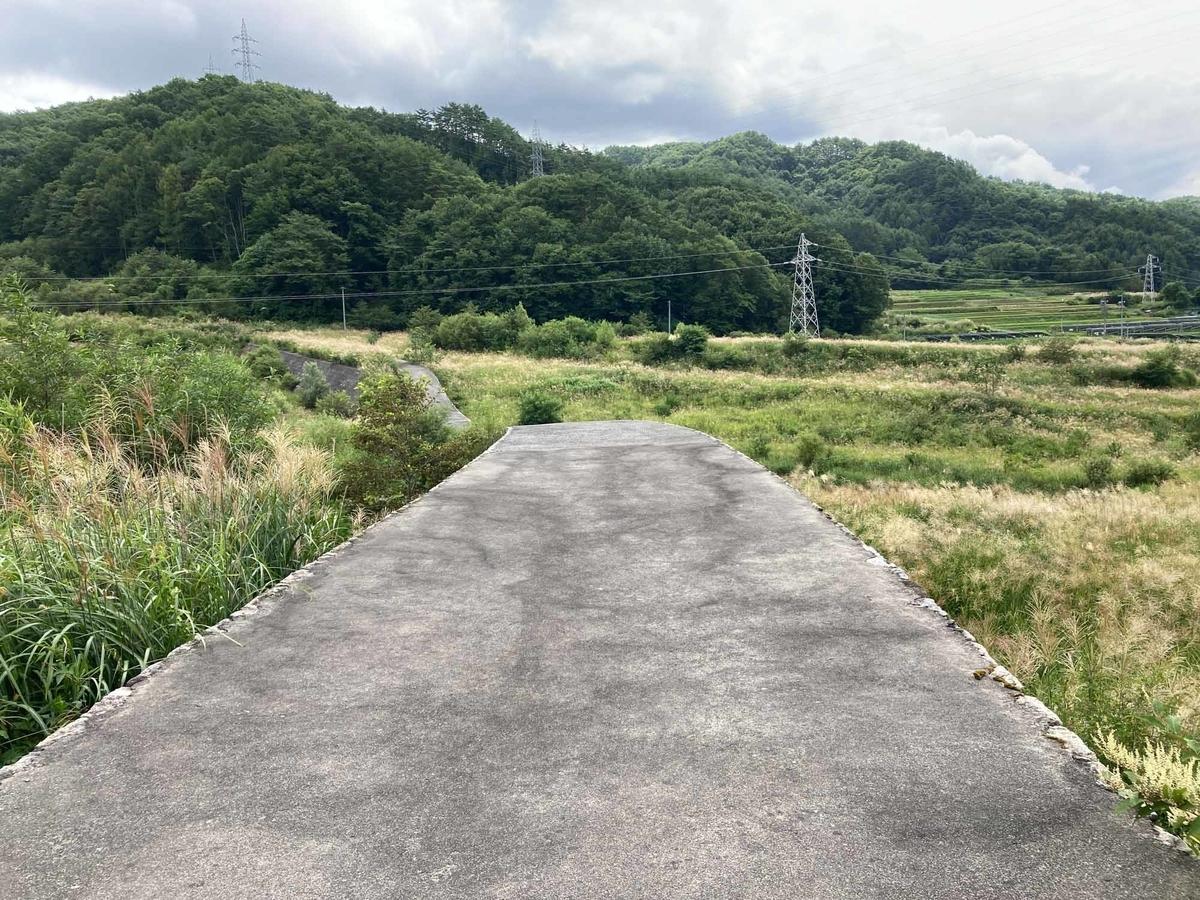 f:id:tamura38:20200828120348j:plain