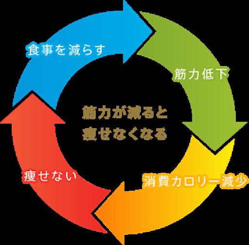f:id:tamutamu83:20171101082112p:image