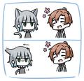 懐かない猫