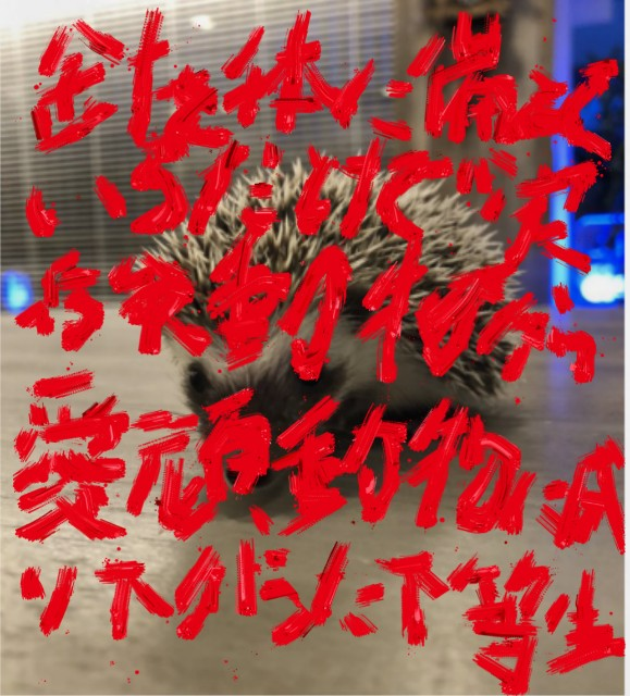 f:id:tanadaimonster94:20180612101053j:image